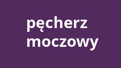 pecherz_moczowy